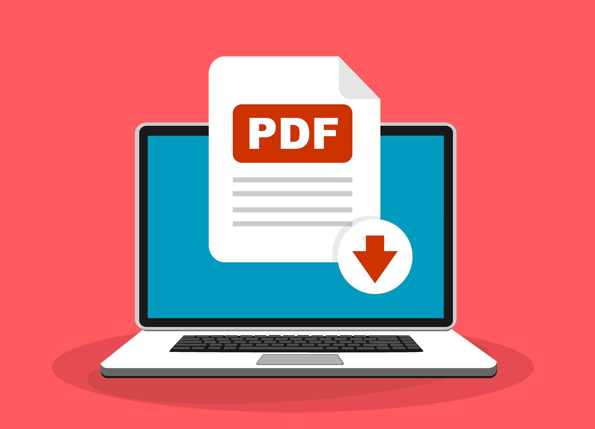 pdf vertalen