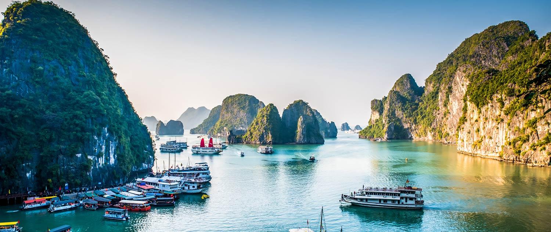 vietnamees vertaalbureau